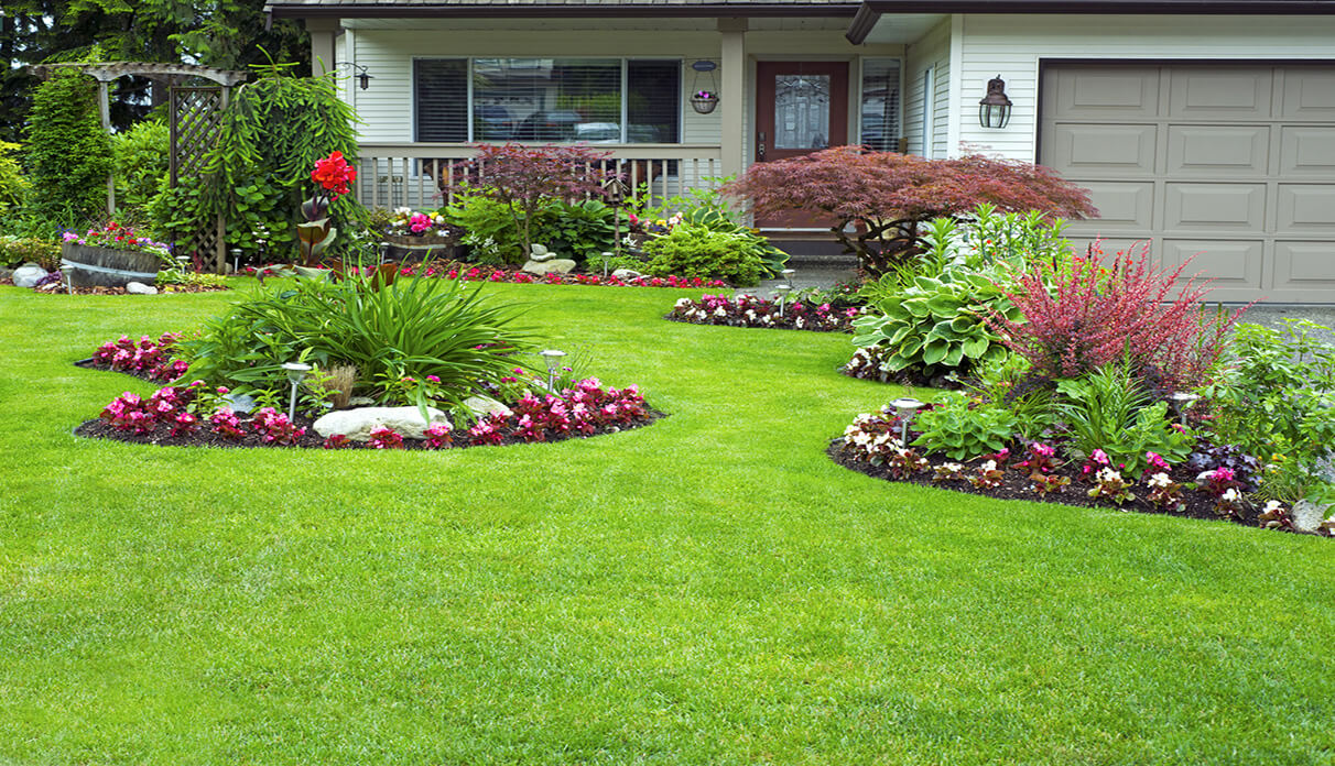 Landscaping fertilization irrigation clean cut lawn Yard and garden