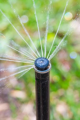 Close up sprinkler