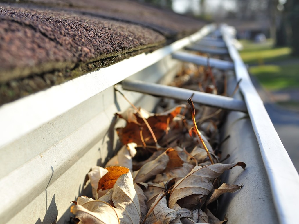 Gutters Clean Up Clean Cut Lawn The Woodlands Tx